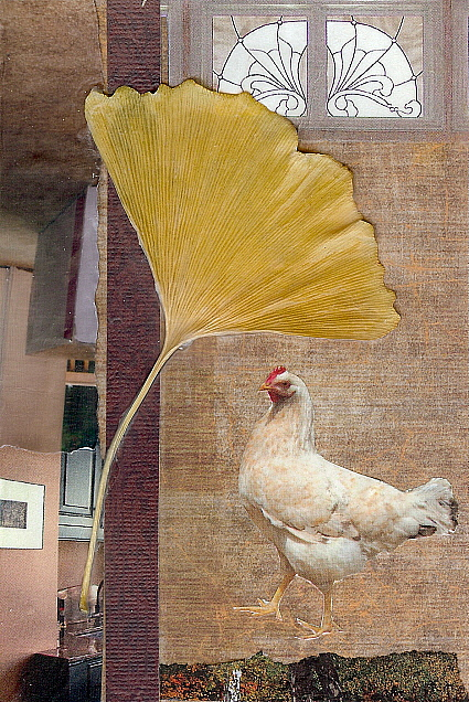 gingko chicken collage with photos and leaf
