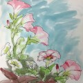Petunias, Watercolor Sketch, sketching group, Life Needs Art